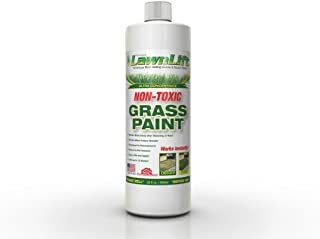 Best washable spray paint for grass Reviews