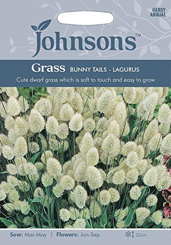 Portal Cool 3: Johnsons Graines Tails Lagurus Herbe Lapine semences