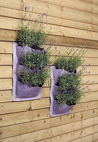 Verti-Plant - Huerto vertical de pared con macetas para el jardín, color lavanda: Amazon.es: Jardín