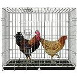 miglior pollaio da giardino recensione prezzi top di gamma