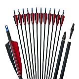 D&Q 31Pollici Frecce da Caccia Albero in Carbonio Spine 500 con Piuma di Tacchino per Arco Compound Ricurvo 12pcs