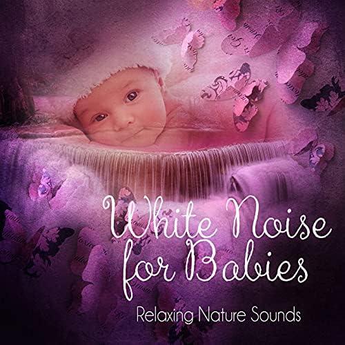 White Noise Universe