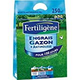 FERTLIGENE Engrais Gazon+Anti-Mousse 10kg élimine durablement Les mousses MOU250