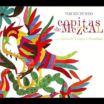 Copitas de Mezcal