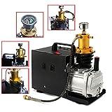 YIYIBY Kompressor Elektrische Luftkompressor Hochdruck PCP Pumpe 300BAR 4500 PSI