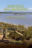 Mesozoic Sea Dragons: Triassic Marine Life from the Ancient Tropical Lagoon of Monte San Giorgio (Life of the Past)