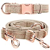Medium-Large Big-Female Heavy-Duty Dog-Collar Leash-Set - Rose Gold 6 Foot Exceptionally Elegant Design and Adjustable in 3 Different Lengths for Medium to Large Dogs