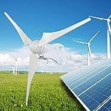 Generador de viento amigable para el hombre, carga alta conversión 130W 580mm -40 °...