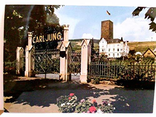 Carl Jung GmbH & Co.KG. Weingut, Schloss Boosenburg. Rüdesheim. AK farbig. Toreinfahrt, Schlßansicht, Weinberge
