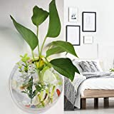 2Krmstr Wall Mount Fishbowl, Acrylic Wall Mounted Fish Tank, Transparent Round Mini Aquarium, Hydroponics Flower Tank Home Decoration Plant Pot