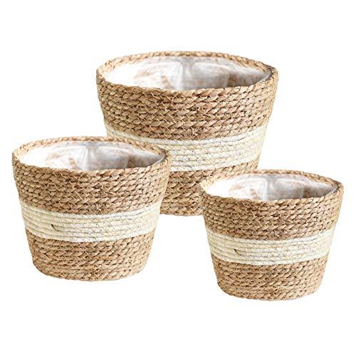 Elibeauty Juego de 3 macetas naturales de pasto marino, cestas elegantes para plantas de interior y exterior, perfectas para cubrir macetas y decoración de habitaciones, color blanco