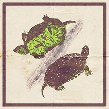 turtle.tape