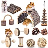 ERKOON 11 Pack Hamster Chew Toys, Small Animal Activity Toys Accessories Molar Teeth Care Natural Apple Wood Ladder Bell Roller for Dwarf Hamsters Rat Guinea Pigs Chinchillas Gerbils Bunnies