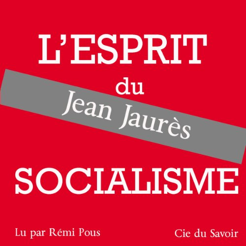 L'esprit du socialisme audiobook cover art