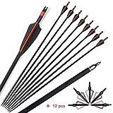 ZSHJG 12pcs Flechas de Fibra de Vidrio de Tiro con Arco de 30 Pulgadas Flechas de Caza Spine 500 Flechas de Práctica de Tiro para Compuesto Arco Recurvo (Rojo)