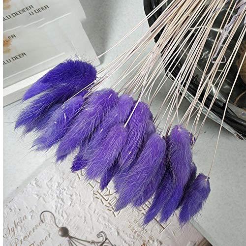 60 stks/partij natuurlijke gedroogde bloemen kleurrijke lagurus ovatus konijn staart gras boeket voor thuis bruiloft decoratie kunstbloemen, pruim