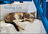Sleeping Cats 2021 - Wandkalender - Format 29,7 x 42 cm
