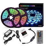 LED Light Strip Kit RF Remote 2x5m(Total 32.8ft) 5050 RGB 300led Strips Lighting