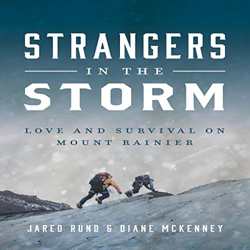 Strangers in the Storm audiobook cover art