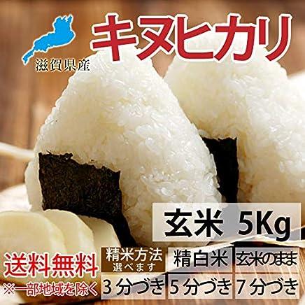 30年産 滋賀県産 キヌヒカリ 5kg【精米方法選べます】 (白米)