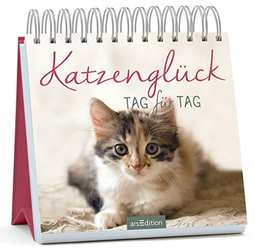 Katzenglück: Tag für Tag