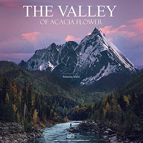 계곡에서 느끼는 우아한 자연 Elegant nature in the vall