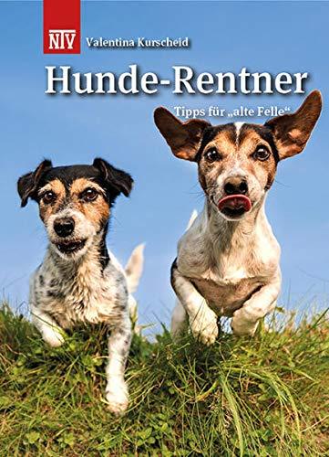 Hunde-Rentner: Tipps für