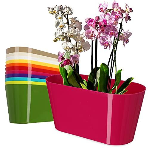 KADAX Vaso da fiori in plastica, 27 x 13 cm, vaso ovale per orchidee, Bellis, viola del pensiero, Drazänen (Amarantrosso)