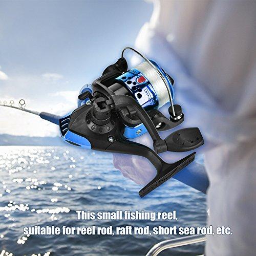 Demeras Angelspinnrolle Leichte Spinnrolle für das Salzwasserfischen(Electroplating Blue)