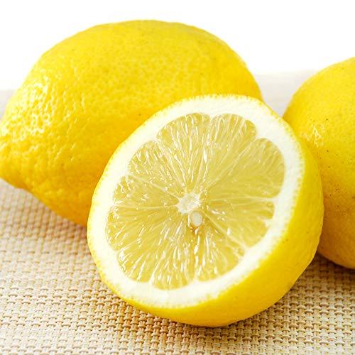 無農薬 黄金の島レモン 10kg 広島産 国産