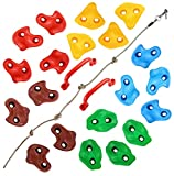 TOPNEW 20PCS Rock Climbing Holds for Wall, Kids Rock Wall Holds Set with 2 Handles, 9.8Ft Knotted Climbing Rope for Indoor and Outdoor Playground Play Set - Includes 2 Inch Mounting Hardware