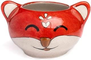 Matr Boomie Handmade Painted Fox Succulent Planter Pot for Indoor & Outdoor