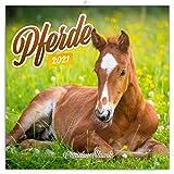 Pferde Wandkalender 2021 Kalender – Christiane Slawik, Broschürenkalender mit Monatskalendarium, Broschurkalender Tierkalender 30 x 30 cm (30x60 Geöffnet)