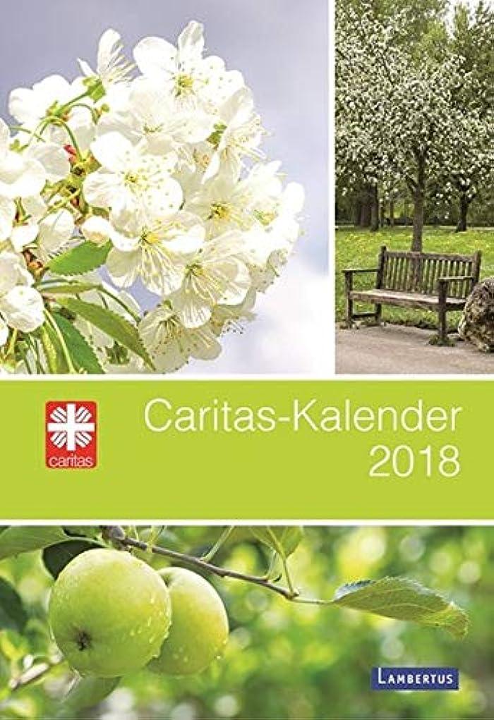 ポンペイピッチ練習Caritas-Kalender 2018
