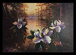 Morning Beauty (Louisiana Swamp - Magnolia) - Michael Lynn 22.5x32 Black Framed - Wall Decor Poster #ML - US 6B10