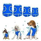 ペット用品 犬服