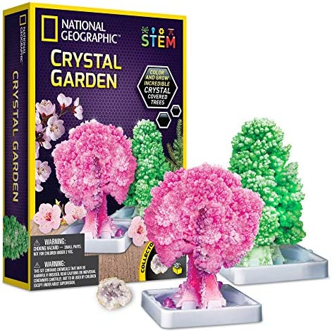 NATIONAL GEOGRAPHIC Crystal Growing Garden Grow Two Crystal Trees in Just 6 Hours with This product image