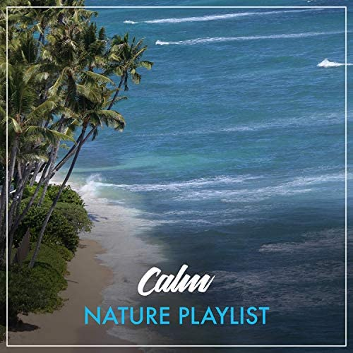 Loopable Ambience & Rest & Relax Nature Sounds Artists