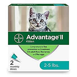 "q?_encoding=UTF8&ASIN=B07FH8XQ1B&Format=_SL250_&ID=AsinImage&MarketPlace=US&ServiceVersion=20070822&WS=1&tag=petscar-20&language=en_US The vet recommended flea treatment for cats ""Get rid of cats flea Once And for All"""