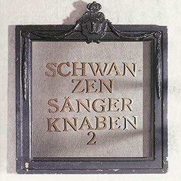Schwanzen Sänger Knaben 2
