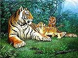 UJIFKAG Pintura por Números,Bebé Tigre, DIY Pintura Al Óleo Kit De Pintura por Números, Pintura Al Óleo para Niños Principiantes Adultos, Regalo Decoraciones Hogar(40 X 50 Cm)