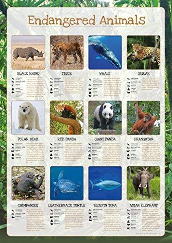 Gefährdete Tiere Poster–Papier laminiert A0 schwarz/red