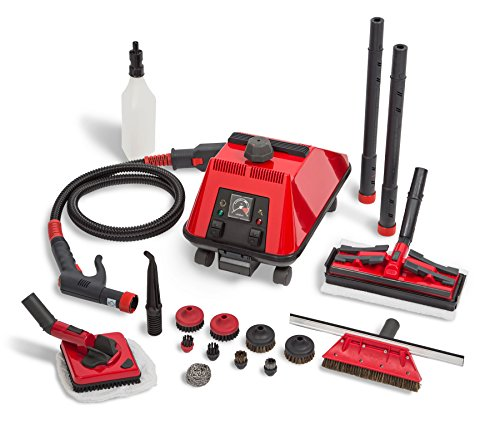 Why Should You Buy Sargent Steam Cleaner Cleaning System - Multi-Purpose, High Pressure, Vapor Steam...