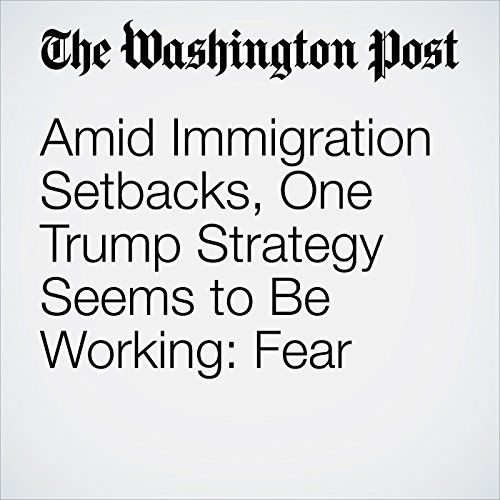 Amid Immigration Setbacks, One Trump Strategy Seems to Be Working: Fear copertina
