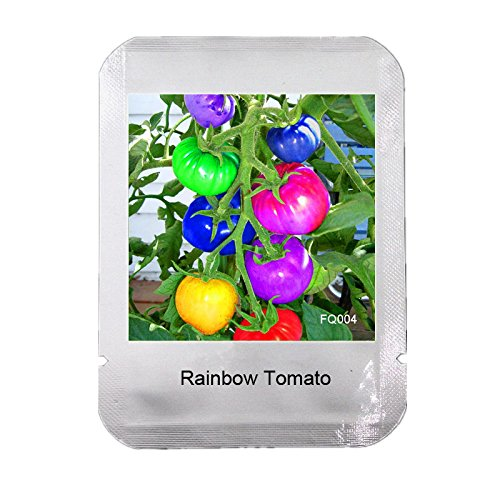 100 Seeds / Pack very rare rainbow tomato seeds, fruit and vegetable seeds, organic potted plants for home garden NON-GMO,#FQ004
