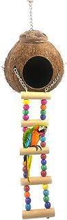 Peau de Noix de Coco avec échelle, nichoir Suspendu en Fibres de Coco pour Cage et extérieur, nid de Reproduction d'oiseau...
