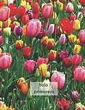 Cuaderno Hola primavera!: Cuaderno de puntos para tus apuntes, diario, notas creativas (Spanish Edition)