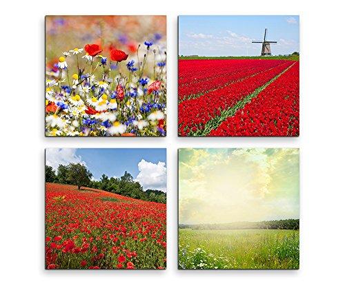 4 foto's van elk 30x30 cm canvasfoto's waterbestendig canvasdruk klaprozen veld wind molen bloem weide