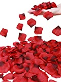 Simplicity Separated 1000 Pcs Rose Petals Wedding,Party Decoration,Re/Dark Red