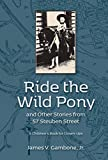 Ride the Wild Pony… and other stories from 57 Steuben Street: A Children's Book for Grown-Ups (English Edition)